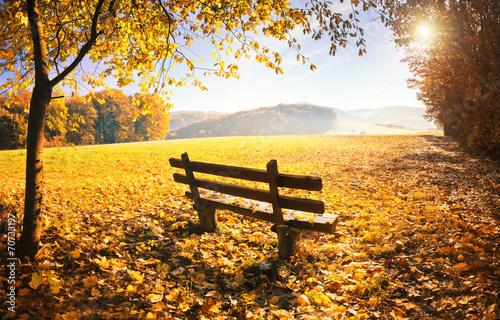 Plagát, Obraz Herbstlandschaft mit Sonnenschein