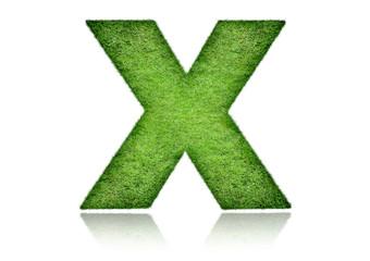 Letter x grass ecology