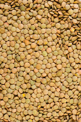 Lentil background