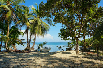 Peaceful Caribbean beach with shade trees and boat