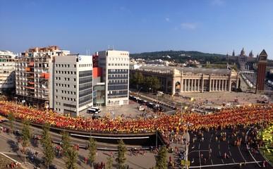 V in Barcelona, Spain