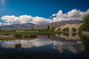 Holy Fish Pond,Shey Monastery