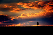 Fototapete Toskana - Abstrakt - Sonnenauf- / untergang
