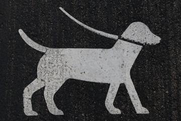 Dog Road Sign