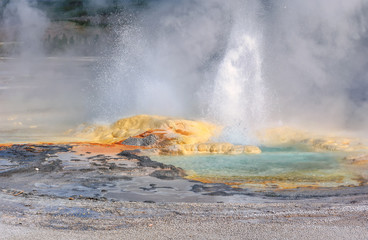 Yellowstone, Geyser, Wyoming, USA