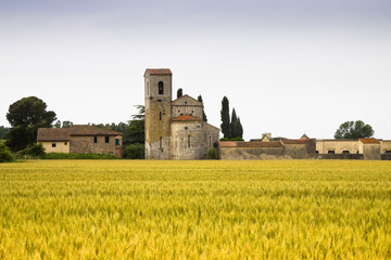 Medieval Romanesque church (Tuscany-Italy)