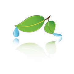 water droplet vector icon