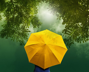 Old yellow umbrella in forest at sunrise , vibrant concept
