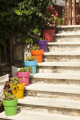 External staircase of house with colorful flowerpots