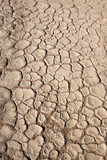 Terreno arido e secco poster