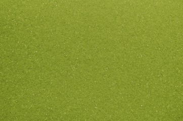green foam Rubber Texture, Pattern