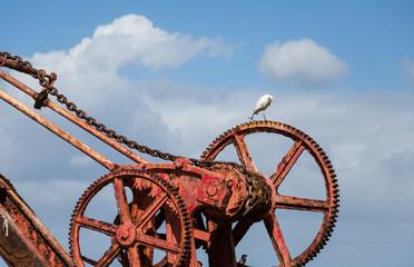 White Crane on Red Crane