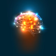 Human Brain - 70754184