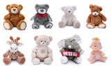 Plush stuffed animals on white background