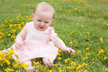 Baby's fun with buttercups