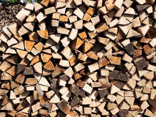 Frisches Brennholz