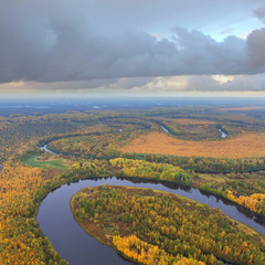 Forest terrain with river in autumn, top view
