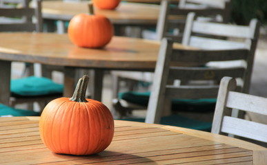 Single pumpkins used on wood tables at outdoor eatery