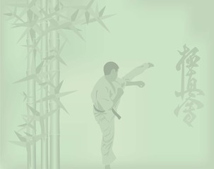 The illustration, the man is engaged in karate on a green backgr