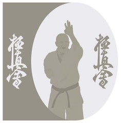 The illustration, the man shows karate on a gray background.
