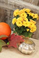 Herbstzauber mit Blumen, Kürbis & Teelicht