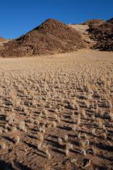 Deserto di sabbia e sassi