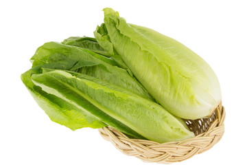 Cos Lettuce set in bamboo basket isolated on White Background