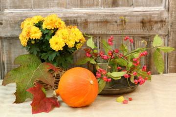 blumige Herbstimpressionen und Kürbis