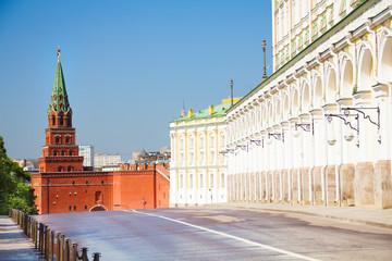 The close street view with Borovitskaya tower
