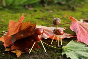 chestnuts fun