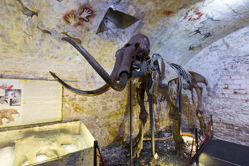 Mammoth skeleton in Barcelona Mammoth Museum