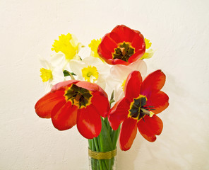 bouquet of tulips and narcissus