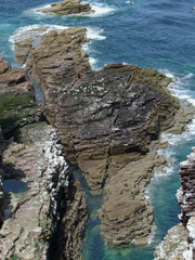 rocky coast detail