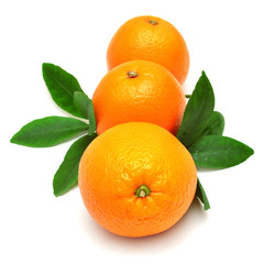 Sweet orange fruit with leaf