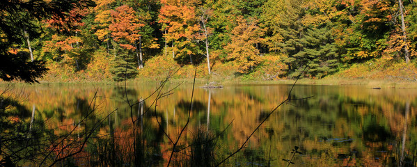 Fall foliage reflected in a lake