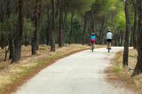 Paseo en bicicleta por el bosque