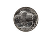 ������, ������: Pristine Buffalo Nickel on white background