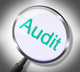 Magnifier Audit Represents Auditing Research And Verification poster