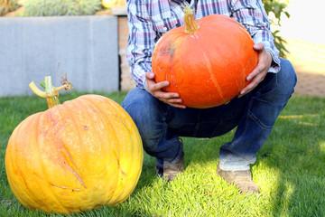 Mann in Garten hält Riesenkürbisse in Hand