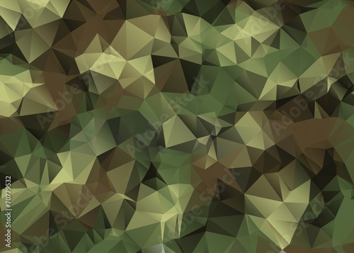Abstract Vector Military Camouflage Background - 70779532