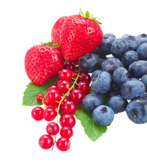 blueberry, red currant and strawberry