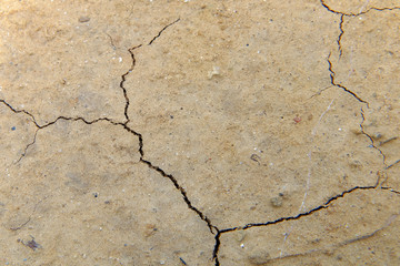 dry soil cracked background
