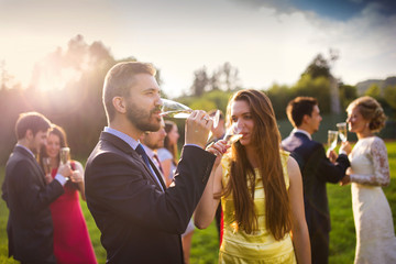 Wedding guests drinking champagne
