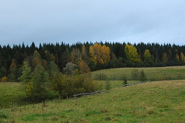 Autumn in Karelia, North of Russia