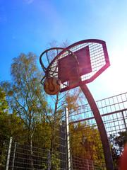 Basketballkorb im Sonnenschein mit blauem Himmel und Bäumen