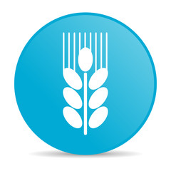 grain internet icon
