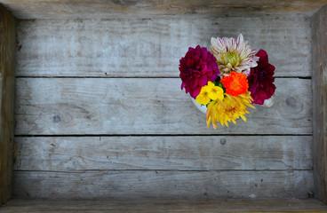 Dahlien Blumen Holz Hintergrund