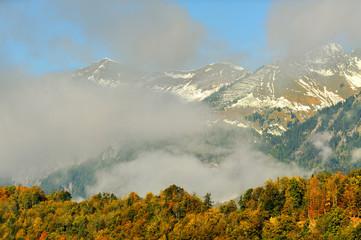 Szwajcaria , Alpy