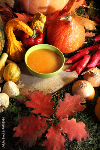 Delicious pumpkin soup - 70785984