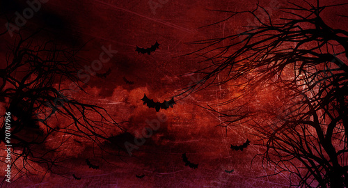 Fotobehang Bruin Grunge Halloween background with spooky trees